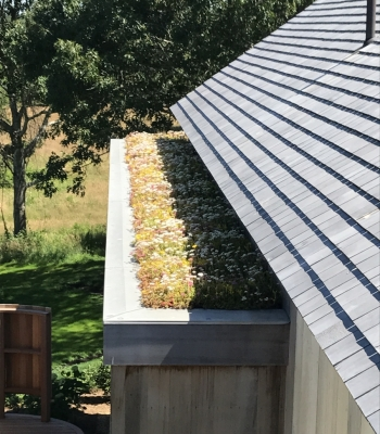 Process Green Roof