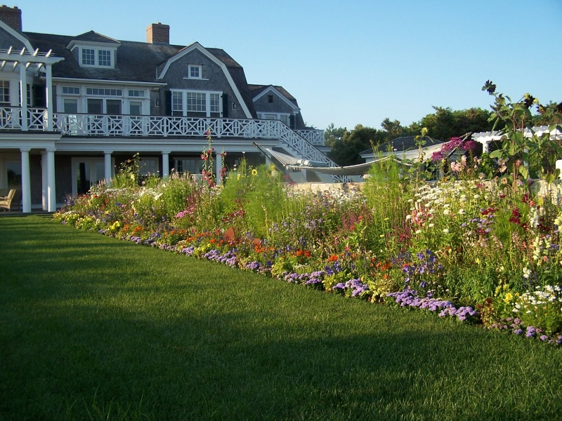 Sargent-plant-bed-photo-3